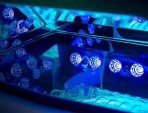 UV-LEDs